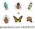 insect collection on background 18289725