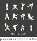 martial arts 18304357