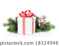 Christmas gift box and fir tree branch 18324946