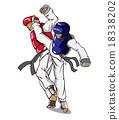Taekwondo. Martial art 18338202