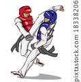 Taekwondo. Martial art 18338206