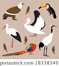 Set of birds. Vector Illustration 18338340