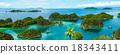 Fam Island in Raja Ampat 18343411