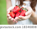 Hands holding strawberries. 18346808