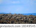 풍경, 해안, 푸른 18349545