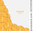 橙色 橘子 橙子 18350936