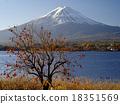 富士山 楓樹 紅楓 18351569