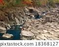 Shirami河秋叶 18368127