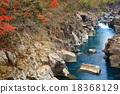 Shirami河秋叶 18368129