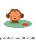 monkey, monkeys, hot 18372507
