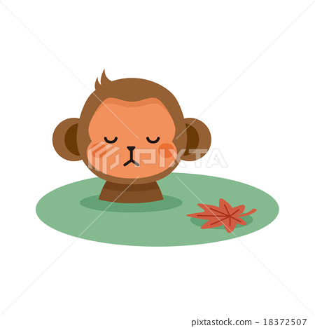 Monkeys and hot springs 18372507