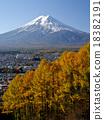 富士山 紅葉 黃葉 18382191