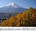 富士山 紅葉 黃葉 18382192