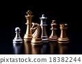 chess 18382244