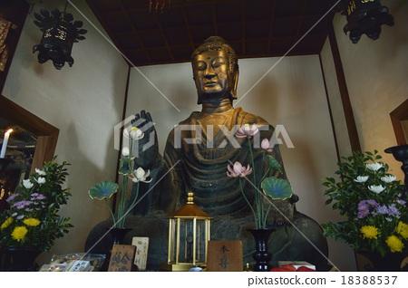 Asuka Big Buddha Asukaji 18388537