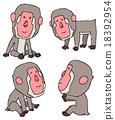 japanese, monkey, monkeys 18392954