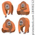 猩猩 穴居人 猿人 18406212