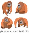 猩猩 穴居人 猿人 18406213