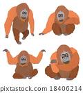 猩猩 穴居人 猿人 18406214