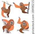 猩猩 穴居人 猿人 18406215