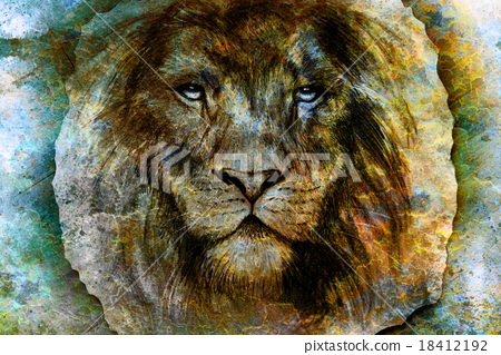 Drawing of a lion head with a majestically 18412192