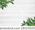 树叶 叶子 背景材料 18424929