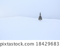 적설, 눈, 한겨울 18429683