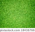 绿色 草地 草坪 18436766