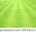 背景 绿色 青草 18438123