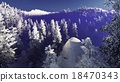 forest, woods, mountains 18470343