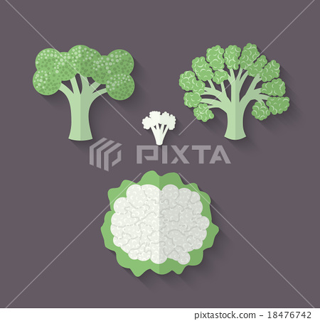 A set of Vegetables - Cauliflower and Broccoli 18476742