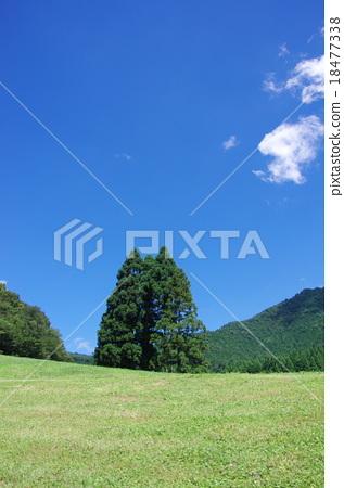 藍天和青山 18477338