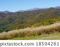 山和Susuki 18504261