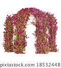 Curly flowering plant pergola 18532448