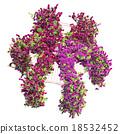 Hexagon gazebo with flowers pergola 18532452