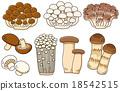 蘑菇 矢量 蟹味菇 18542515