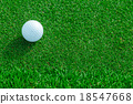 golf ball on the grass 18547668