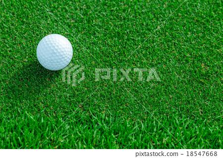 golf ball on the grass 18547668