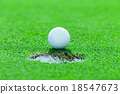 golf ball on the grass 18547673