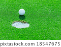 golf ball on the grass 18547675