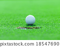golf ball on the grass 18547690
