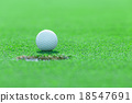 golf ball on the grass 18547691