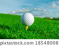 Golf Ball on Tee 18548008