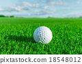 Golf ball on grass 18548012