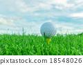 Golf ball 18548026