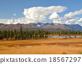 Short autumn landscape of inland Alaska, tundra of grass autumn leaves, spruce tiger, shining glacier 18567297