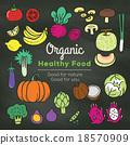 Organic food doodle on chalkboard background 18570909