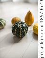 黃綠色蔬果 南瓜 蔬菜 18579629