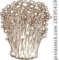 팽이 버섯 18595419