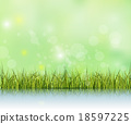 Green grass with reflection on water floor 18597225